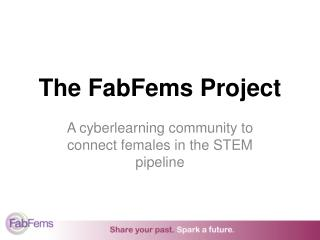 The FabFems Project