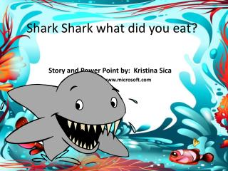 Shark Shark what did you eat?