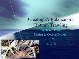 Creating A Balance For Bottom Trawling