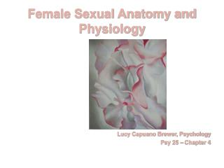 Female Sexual Anatomy and Physiology