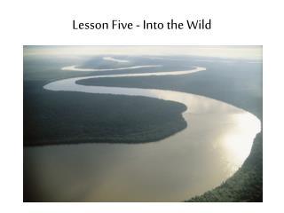 Lesson Five - Into the Wild