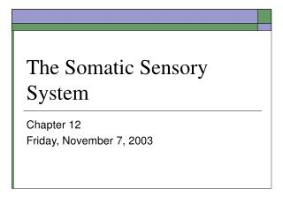 The Somatic Sensory System