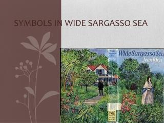 Symbols in  Wide Sargasso Sea