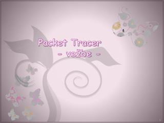 Packet Tracer - vežbe -
