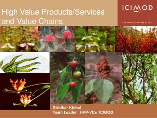 High Value Products/Services and Value Chains