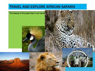 TRAVEL AND EXPLORE AFRICAN SAFARIS