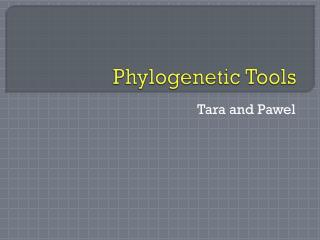 Phylogenetic  Tools
