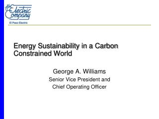Energy Sustainability in a Carbon Constrained World