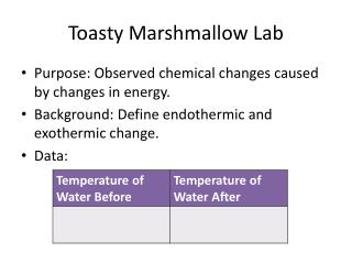 chemical change and observation lab