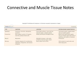 Connective and Muscle Tissue Notes