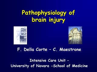 Pathophysiology of  brain injury