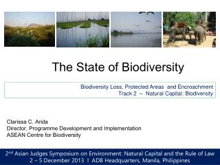 The State of Biodiversity