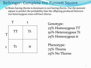 Bellringer : Complete the  Punnett  Square