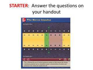 STARTER :  Answer the questions on your handout
