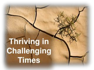 Thriving in Challenging Times