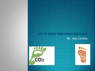 How to reduce your carbon footprint?