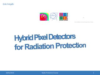 Hybrid Pixel Detectors for Radiation Protect ion