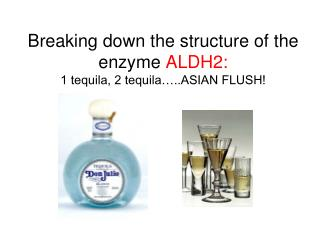 Breaking down the structure of the enzyme  ALDH2:  1 tequila, 2 tequila…..ASIAN FLUSH!