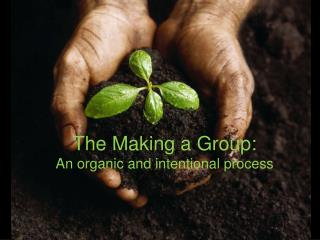 The Making a Group:  An organic and intentional process