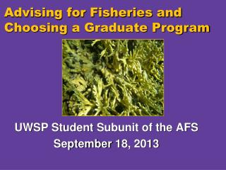 Advising for Fisheries and Choosing  a Graduate Program