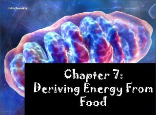 Chapter 7: Deriving Energy From Food