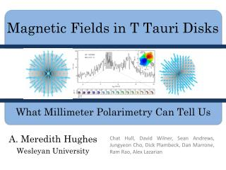 Magnetic Fields in T  Tauri  Disks