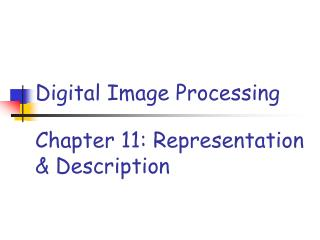 Chapter 11: Representation & Description