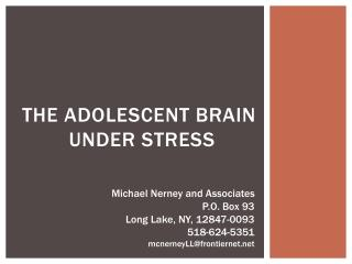 The adolescent brain  under stress