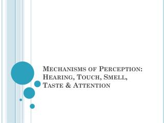 Mechanisms of Perception: Hearing, Touch, Smell, Taste & Attention