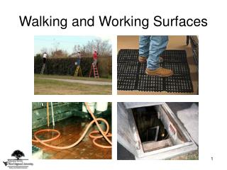 Walking and Working Surfaces