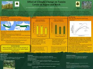 Effect of Climate Change on Tannin Levels in Aspen and Birch