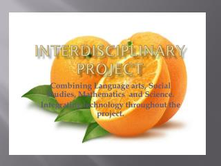 Interdisciplinary Project