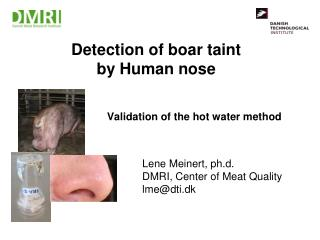Detection of boar taint by Human nose