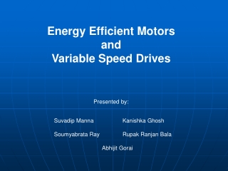 Energy Efficient Motors and Variable Speed Drives