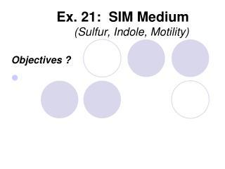 Ex. 21: SIM Medium (Sulfur, Indole , Motility)