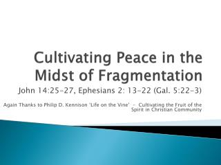Cultivating Peace in the Midst of Fragmentation