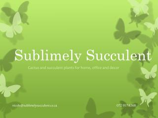 nicole@sublimelysucculent.co.za