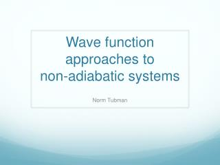 Wave function approaches to  non-adiabatic systems