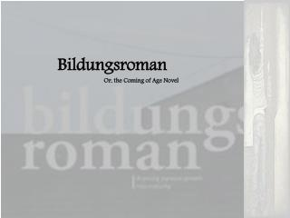 Bildungsroman 	Or, the Coming of Age Novel