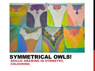 Symmetrical owls!