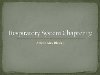 Respiratory System Chapter 13: