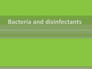 Bacteria and disinfectants