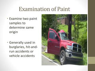 Examination of Paint