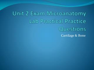 Unit 2 Exam Microanatomy Lab Practical Practice Questions