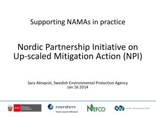 Supporting NAMAs  in  practice