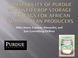 Profitability of  purdue  improved crop storage (PICS) bags for  african  common bean producers