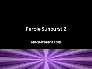 Purple Sunburst 2