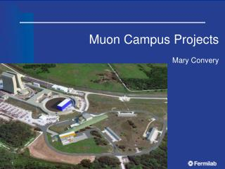 Muon  Campus Projects Mary  Convery