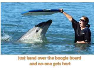 Just hand over the boogie board and no-one gets hurt
