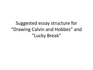 "Suggested essay structure for  ""Drawing Calvin  and Hobbes"" and ""Lucky Break"""